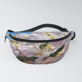 Turn Your Face to the Sun Fanny Pack