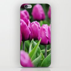 Spring beauties iPhone & iPod Skin