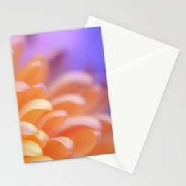 Flower Sunrise | cute pastel flower, peach flowers, orange floral pattern, pretty petals, macro Stationery Cards