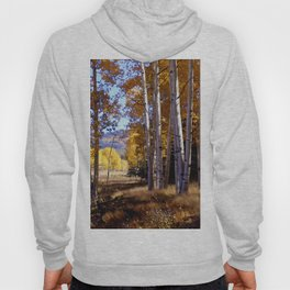 Autumn Paint, Chama New Mexico Hoody