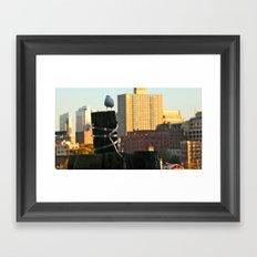 Brooklyn Gull Framed Art Print