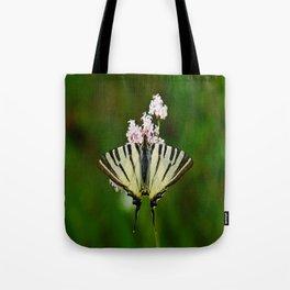 Scarce Swallowtail On Wild Garlic Flowers Tote Bag