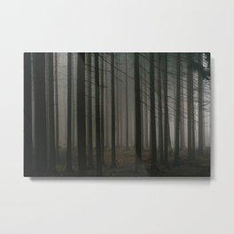 Dark morning forest Metal Print