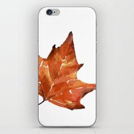 dry iPhone Skin