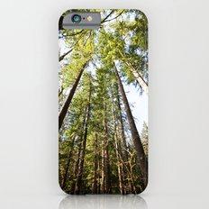 canopy  Slim Case iPhone 6s