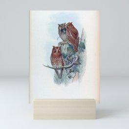 scops pennata Mini Art Print
