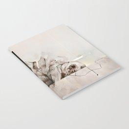 Lucid Mechanisms Notebook