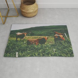 Field of Highland Cattle Rug