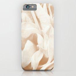 Cafe Au Lait Dream #2 #rose #floral #decor #art #society6 iPhone Case