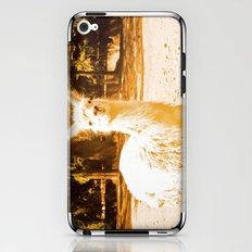 Alpaca yellowish. iPhone & iPod Skin