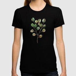 Silver Dollar Eucalyptus – Green Palette T-shirt