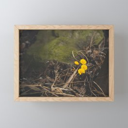 Little Survivors Framed Mini Art Print