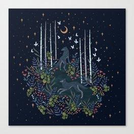 Midnight Exploration Canvas Print