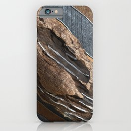 TRONCO D'ALBERO iPhone Case