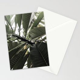 Natural Background 77 Stationery Cards