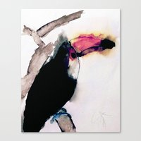 toucan Canvas Prints featuring toucan by Kay Weber