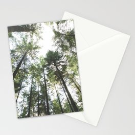 Looking up at the Pine Trees Stationery Cards