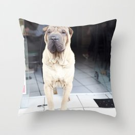 French Cafe Pooch Throw Pillow