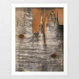 Fray Art Print