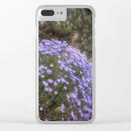 Wildflowers at Capitol Reef Clear iPhone Case