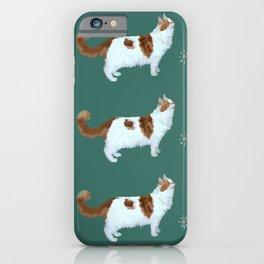 Brady the Cat Pattern iPhone Case