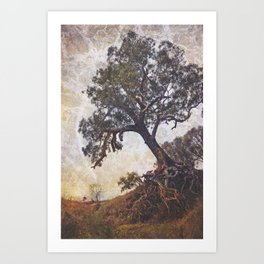 Olden Tree Art Print