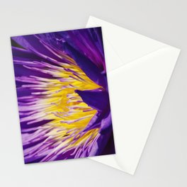 Dance of the Inner Flame Stationery Cards