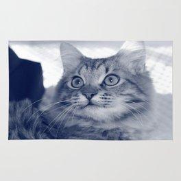 Cat-Pissu *-* [SWAG] Rug
