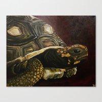 tortoise Canvas Prints featuring Tortoise by Minx Paints