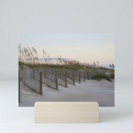 Stanchions Mini Art Print