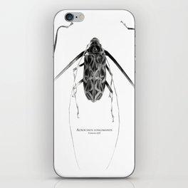 Acrocinus I iPhone Skin