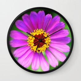Zinnia Lavender Gradation Wall Clock