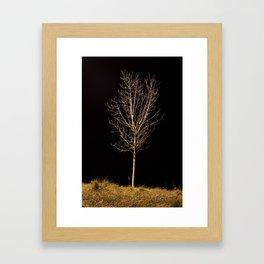 Tree Framed Art Print