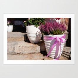 Blooming Calluna vulgaris or heather Art Print