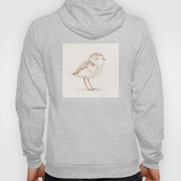 Piping Plover Chick Hoody