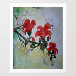 Krishnochura flowers Art Print