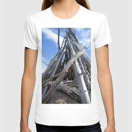 Lake Superior Shoreline T-shirt