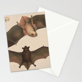 Vintage Flying Bat Illustration (1874) Stationery Cards