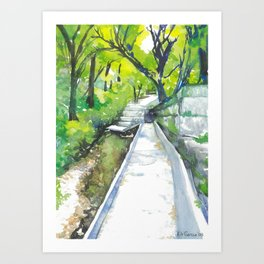 Austin Hike & Bike Trail Art Print