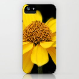 flowers of spring on black -30- iPhone Case