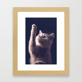 Catch me Framed Art Print