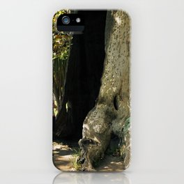 Fairy in a Tree! iPhone Case