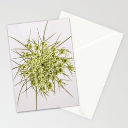 Queen Ann's Lace Flower Stationery Cards