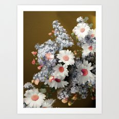 Autumn daisies Art Print