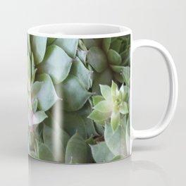 Enduring Succulent Coffee Mug