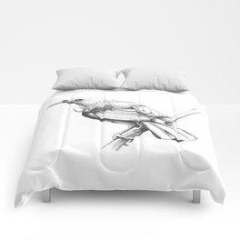 New Zealand Tui Comforters