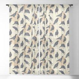 Ravens Sheer Curtain
