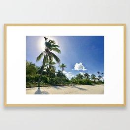Sunny Palms Framed Art Print
