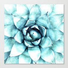 Succulent - A Watercolour Mandala Canvas Print