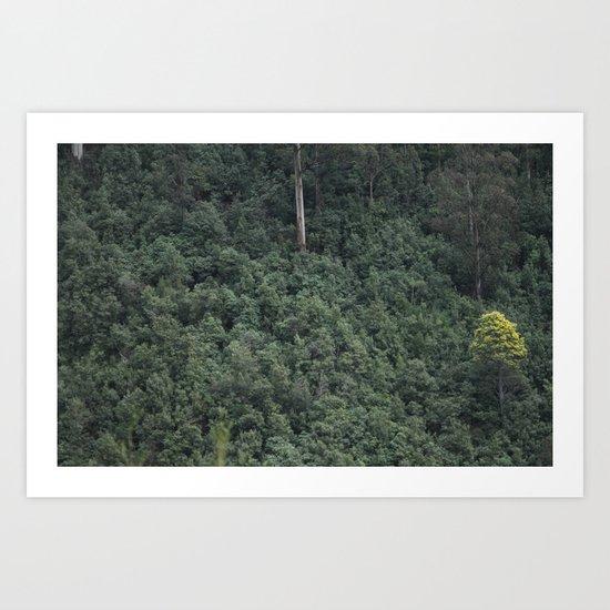 Lonely light Art Print
